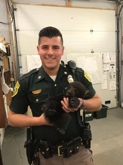 Police Rescue Little Bear Cub Who Was Too Weak To Cross