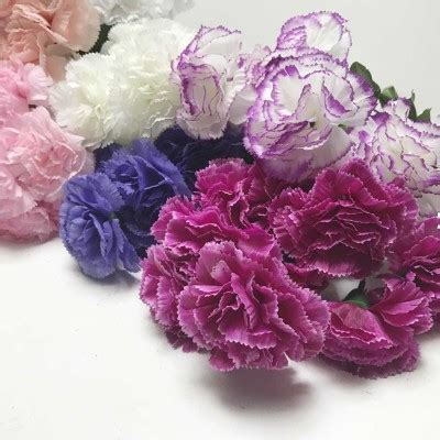 Carnation   Artificial Trees and Flowers Wholesale