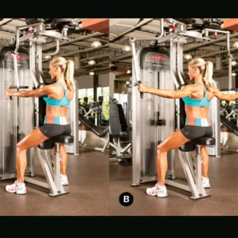 Reverse Pec Dec Fly - Exercise How-to - Workout Trainer by